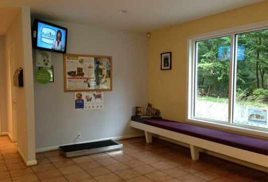 Our lobby: Veterinary Photos in Arnold